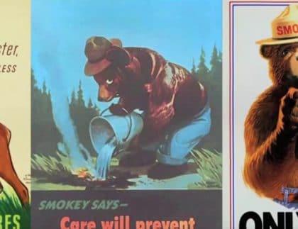 smokey the bear junior park ranger