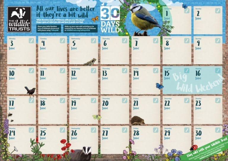 30 Days Wild from Wildlife Trust