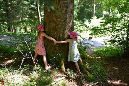 children hugging tree outdoors