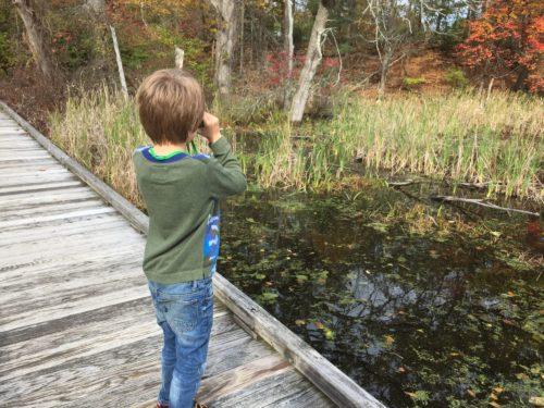 child birding