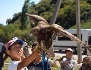 child observing wildlife