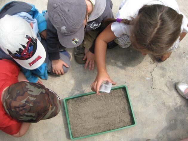 nature school