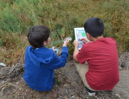 Boys playing nature bingo