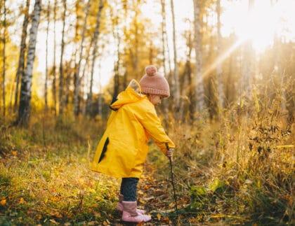 child mushroom hunting