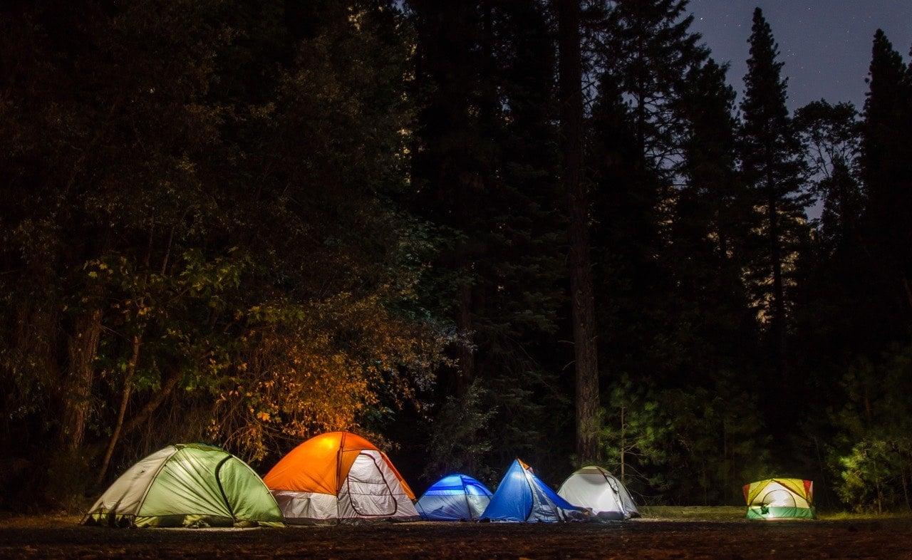 wild summer camp