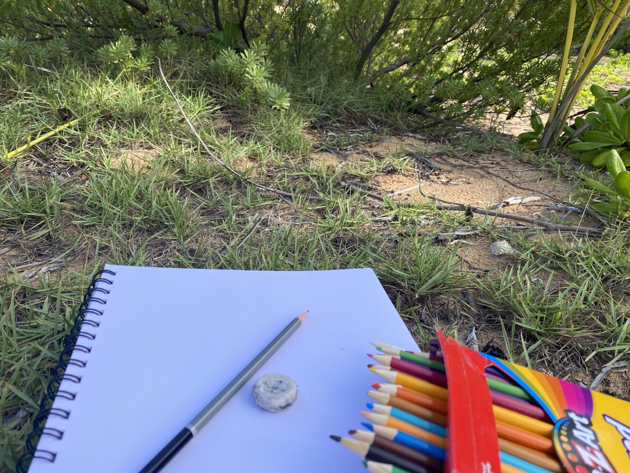 nnature journaling supplies